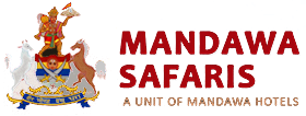 Welcome To Mandawa Safaris